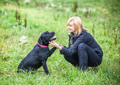 Frau mit hund spielen — Stockfoto