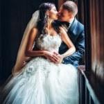 Newlyweds embraces — Stock Photo #47355299
