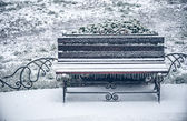 First snow of winter bench  — Stock Photo