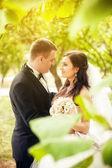 Mariée et le marié dans le parc — Photo