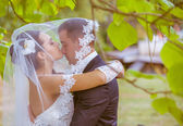 新娘和新郎在公园 — 图库照片