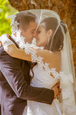 Bride and groom in park — Stock Photo