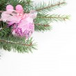 Branch of Christmas tree with ball and pinecone — Stock Photo #8135473