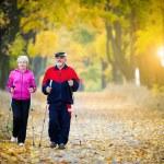 Nordic walking — Stock Photo #33295279