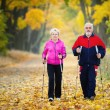 Nordic walking — Stock Photo #33295303
