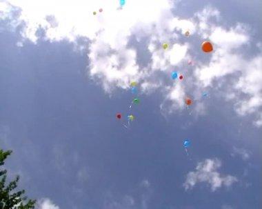 Ballonger upp i himlen — Stockvideo