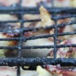 Quails on grill — Stock Video #30440585