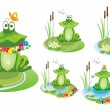 Frog. Vector illustration. — Vettoriali Stock