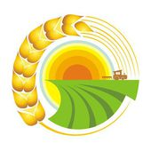 Harvest. — Stock Vector