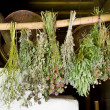 Bunches of dried healing herbs — Stock Photo