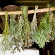 Stock Photo: Bunches of dried healing herbs