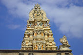 Veeraraghava храм — Стоковое фото