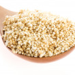 Amaranth popping, gluten-free, high protein grain cereal — Stock Photo #23918273
