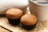 Homemade chocolate muffins — Stock Photo