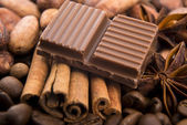 Chocolate with coffee beans, spices and cacao — Stock Photo