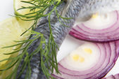 Fillet herring with onion and lemon — Stock Photo