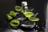 Sliced aloe leaves with oil on the stone — Stock Photo