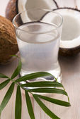Coconut and coconut water — Stock Photo
