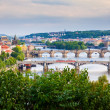 Vltava River - Prague — Stock Photo