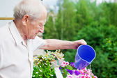 Concentrated Senior Watering Flowers — Stock Photo