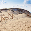 Grey Dunes — Stock Photo #24871745