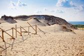 Grey Dunes — Stock Photo