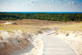 Sand Dunes Not Far From Nida — Stock Photo