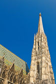 Details of Stephansdom, Vienna — Stock Photo