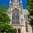 Side view of the Votivkirche, Vienna — Stock Photo