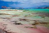 Pink Sand in Balos Lagoon — Stok fotoğraf