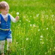 Girl at the dandelion field — Stock Photo #48471569
