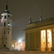 Vilnius Cathedral and Belfry Tower — Stock Photo #4893419