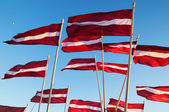 Latvian flags — Stock Photo