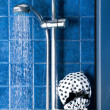Shower cap in a shower unit — Stock Photo #49286785