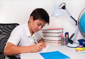 Schoolboy doing his homework — Stock Photo