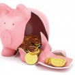 Piggy bank with golden coins — Stock Photo