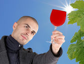 Male winemaker holding up glass of wine for checking consistency of his creation — Stock Photo