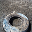 Old car tyre on the dried soil — Stock Photo #46137411