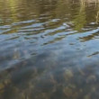 River rippled surface - Stock Photo