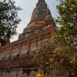 Ayutthaya UNESCO  temples - Stock Photo