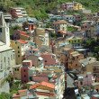 Bright liguria — Stock Photo