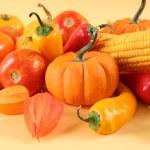 Beautiful vegetables — Stock Photo #13178443