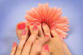 Colorful manicure — Stock Photo