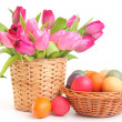 Spring and flower - Stock Photo