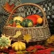 Stock Photo: Autumn composition