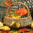 Autumn leaves and pumpkins — Stock Photo