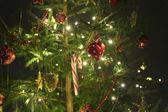 Green christmas — Stock Photo