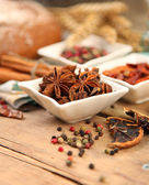 Brown anise — Stock Photo