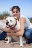 Bulldog — Fotografia Stock