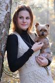 Dog terrier — Stock Photo